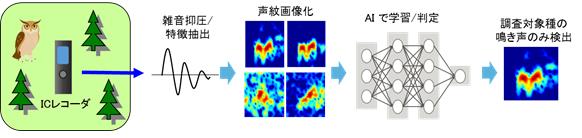 AIの音声解析で絶滅危惧種の生息調査 富士通がシステム開発