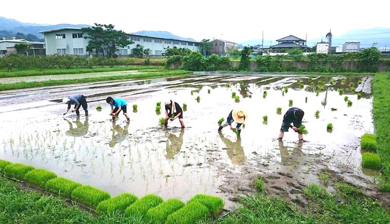 日本人の協調性のルーツは「地域活動」 京大が実証