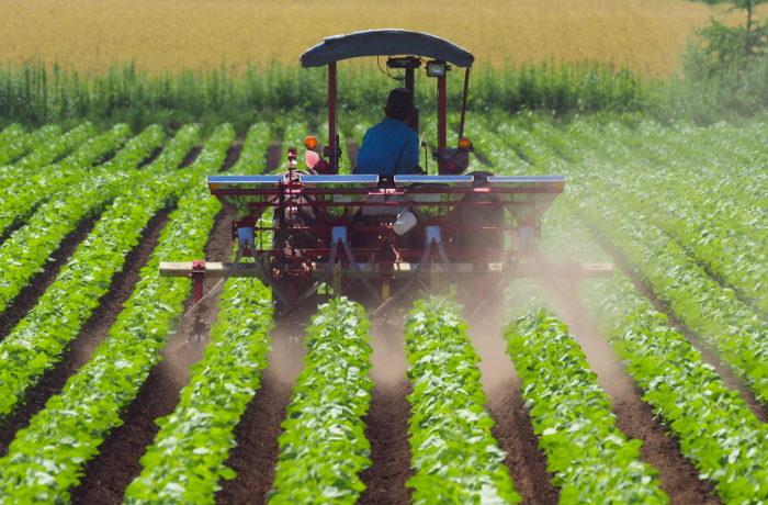 スマート農業は日本の農業を救えるか?【ニュースのコトバ解説】