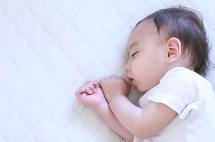 睡眠が持つ機能的意義の一端が明らかに