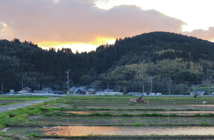 日本の食料問題を見据える『農業崩壊』【GWに読みたい本】