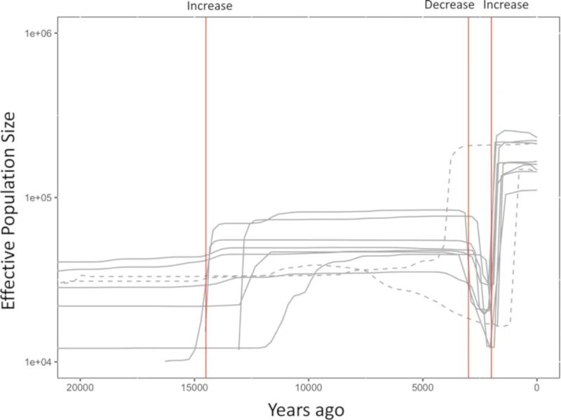 現代人のゲノムデータから、縄文時代晩期の人口減少が明らかに