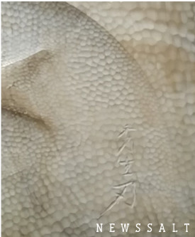 伝統文化を継承するということ②―【前編】木彫りの里 井波に伝わる彫刻美